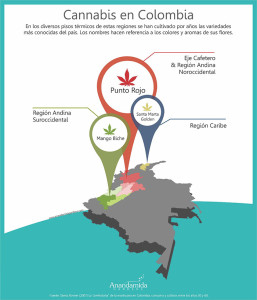 articles-using-thc-for-epilepsy-in-colombia_text_2
