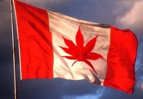 Canadá se convierte en el primer país del mundo en legalizar el uso médico de la marihuana