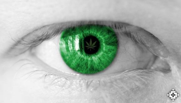 Primera evidencia científica que sugiere el uso medicinal del cannabis para tratar el glaucoma
