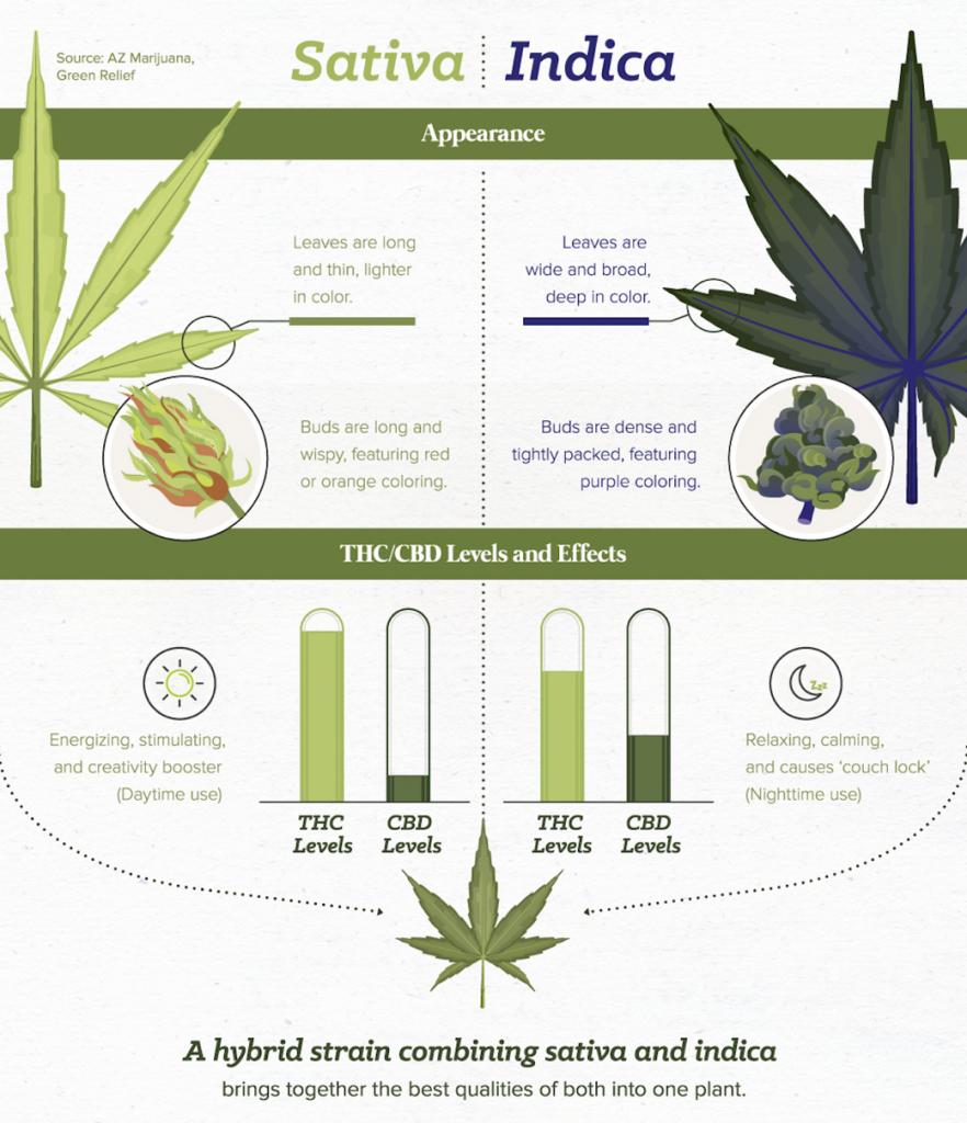 Cannabis Híbrido