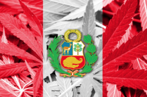 Peru regulates the medicinal and therapeutic use of cannabis and its derivatives