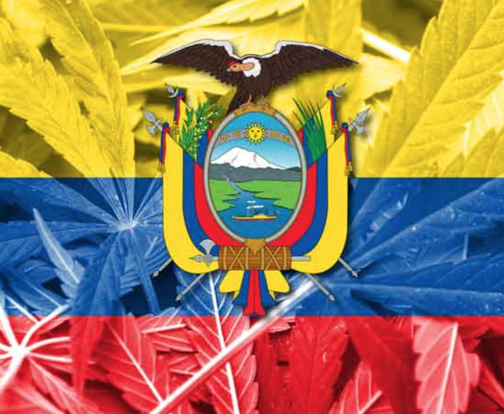 Ecuador approved the use of cannabis derivatives for medicinal and therapeutic purposes