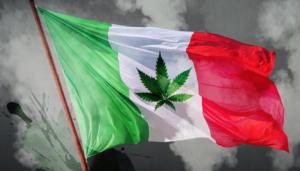 México se convierte en el segundo país en América Latina en aprobar el uso adulto del cannabis
