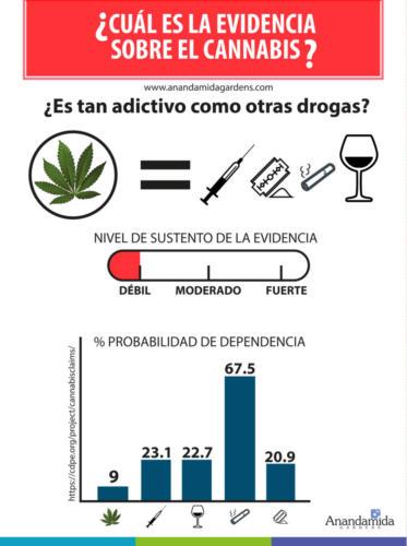 Adicción-y-cannabis