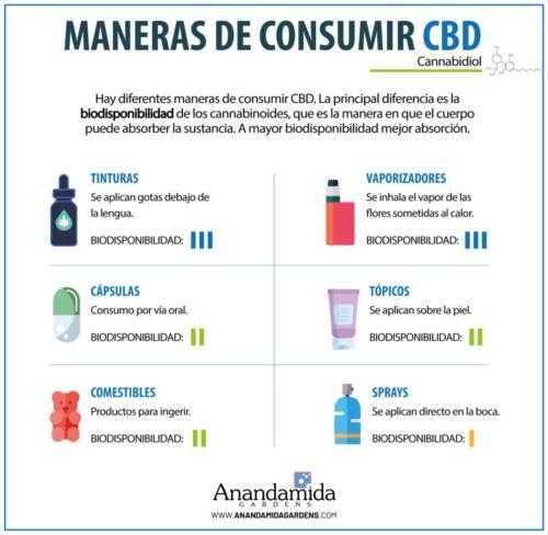 Maneras de Consumir CBD