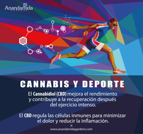 Deporte y Cannabis