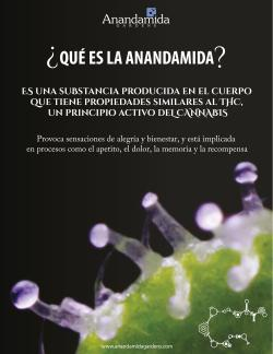 Que es la Anandamida?